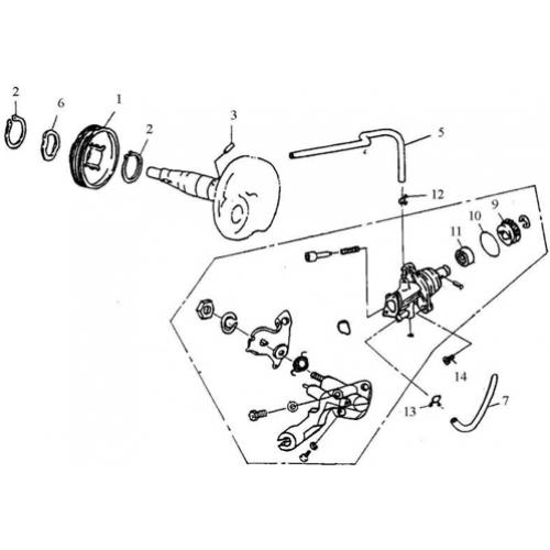 Oil Pump (Silver Fox 50)