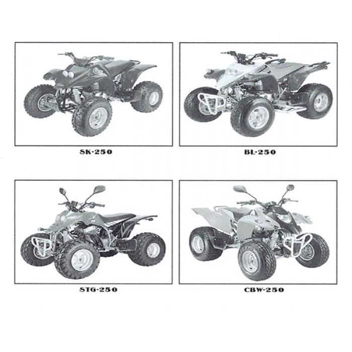 Kasea 250cc service Manual