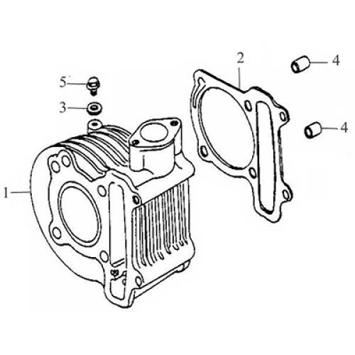 Cylinder (Thunder Bike 150)