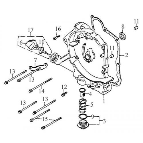 Right Crankcase Cover (Thunder Bike 150)