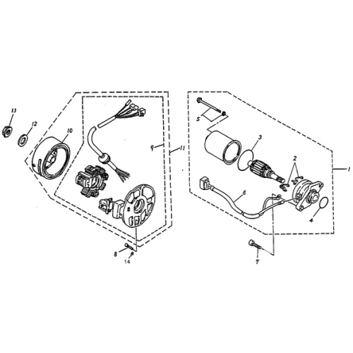 Generator, Starting Motor (Thunder Bike 50)