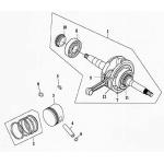 Crankshaft | Piston