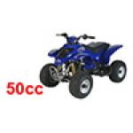 Kasea Skyhawk 50 Quad