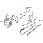 Cam Chain, Cylinder